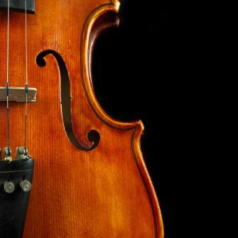 vertical-violin-art-iordanis-pallikaras